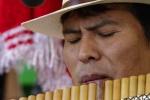 Joueur de flute de pan.jpg