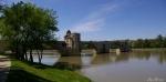 Pont d'Avignon.JPG