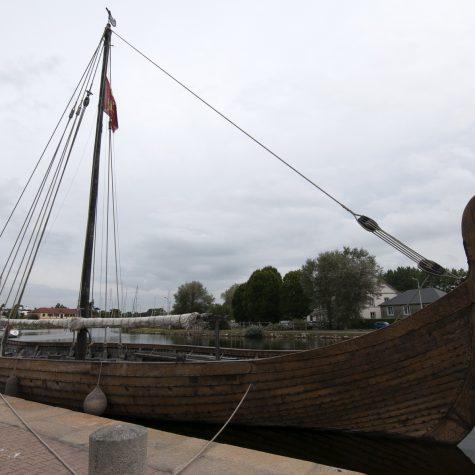 Viking04